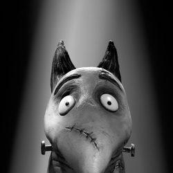 Sparky, de 'Frankenweenie'