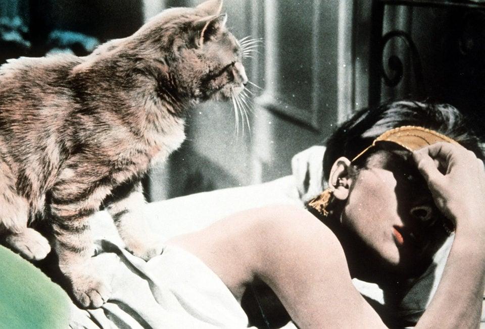 """Audrey Hepburn junto a """"gato"""" en 'Desayuno con diamantes'"""