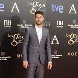Luis Fernández en la alfombra roja de los Goya 2013