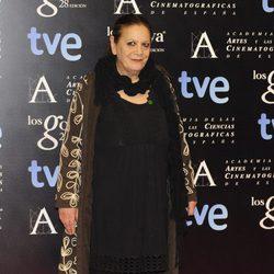 Terele Pávez en la alfombra roja de la fiesta de los nominados a los premios Goya 2014