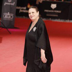 Terele Pávez en los Premios Feroz 2014