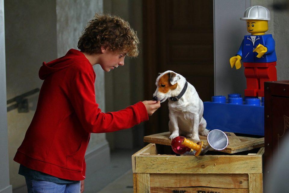 Pancho, el perro millonario, fotograma 10 de 20