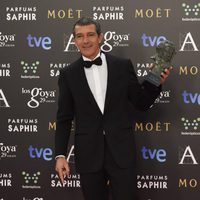 Antonio Banderas, Goya de Honor 2015