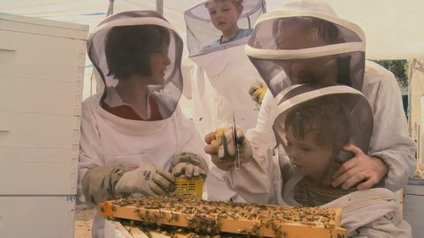 Mucho más que miel, fotograma 4 de 8