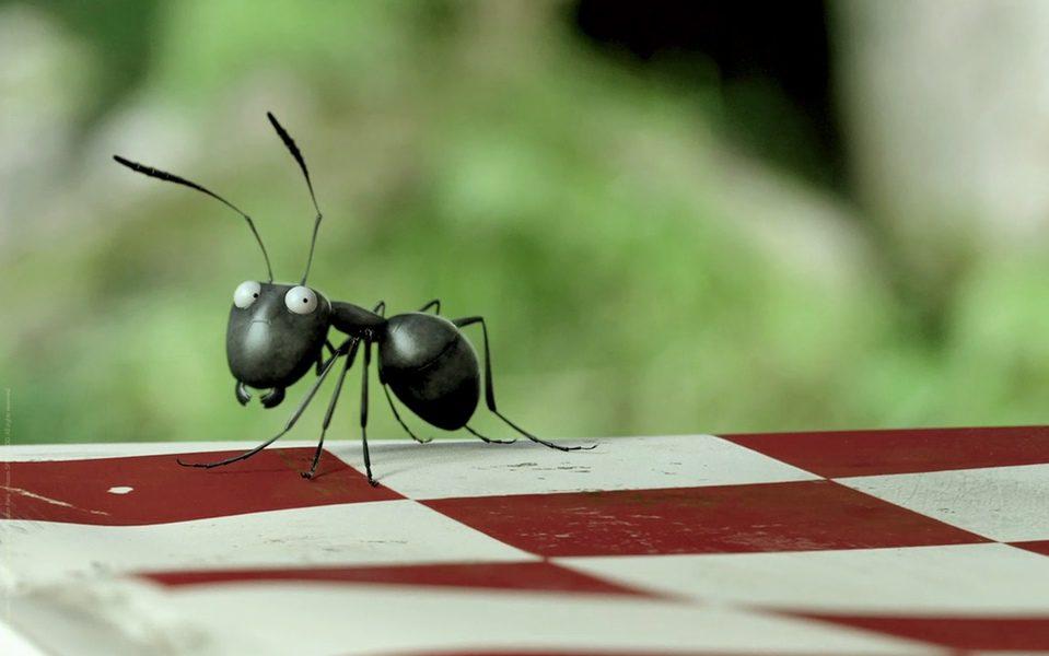 Minúsculos: El valle de las hormigas perdidas, fotograma 18 de 24