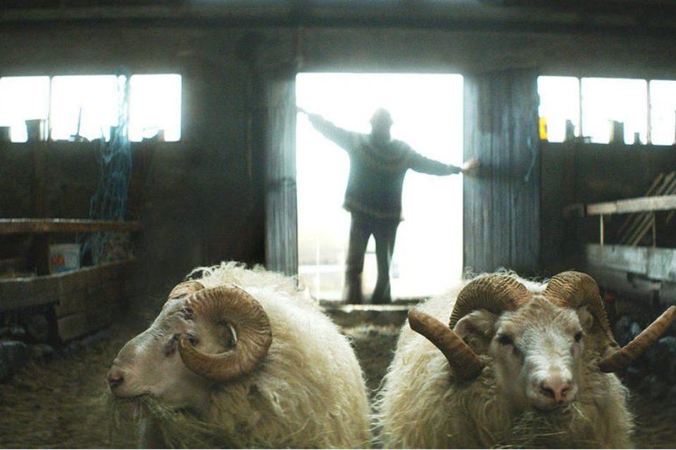Rams (El valle de los carneros), fotograma 3 de 7