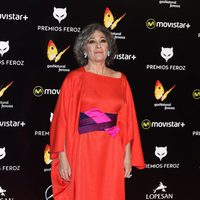 Luisa Gavasa en la alfombra roja de los Premios Feroz 2016