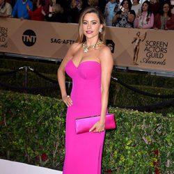 Sofia Vergara en la alfombra roja de los SAG Awards 2016