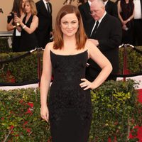 Amy Poehler in red carpet of SAG Awards 2016