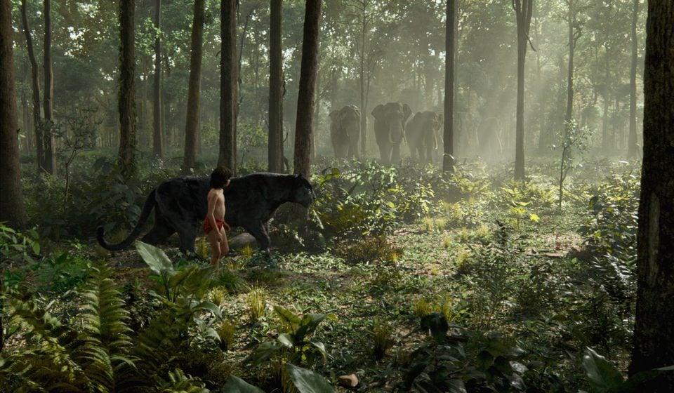 El Libro de la Selva, fotograma 17 de 19