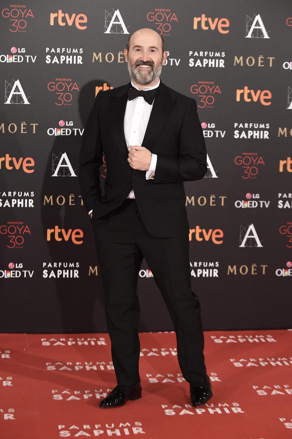 Javier Cámara en la alfombra roja de los Premios Goya 2016