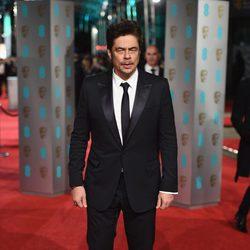Benicio del Toro en la alfombra roja de los BAFTA Awards 2016