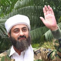Tere Bin Laden: Dead or Alive