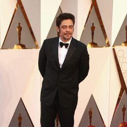 Benicio del Toro en la alfombra roja de los Oscar 2016