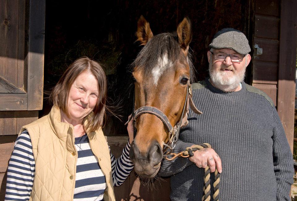 Caballo ganador (Dark Horse), fotograma 1 de 8