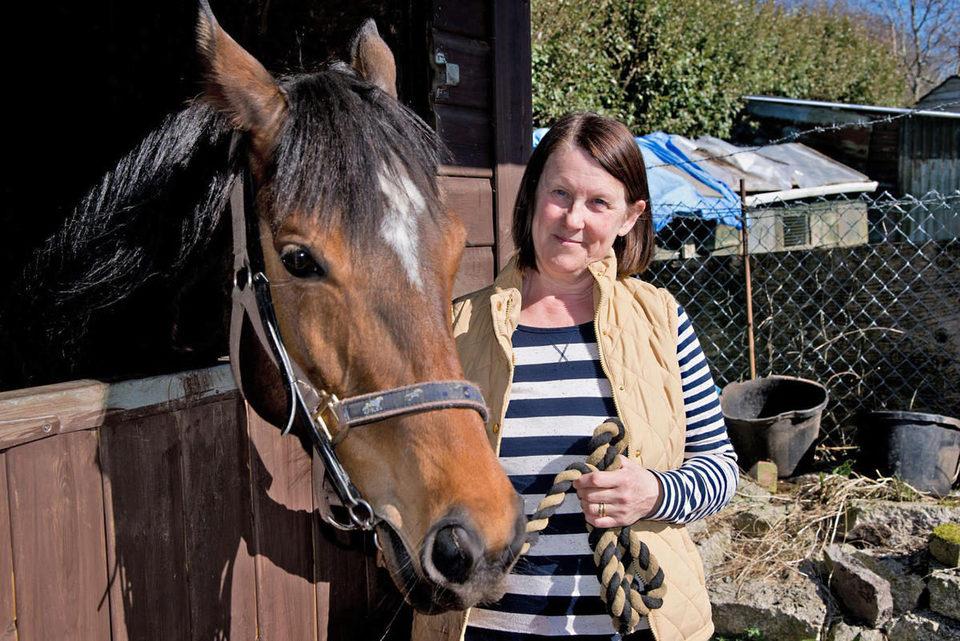 Caballo ganador (Dark Horse), fotograma 3 de 8