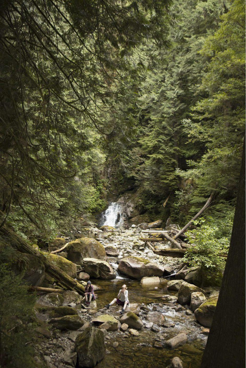 En el bosque, fotograma 7 de 8