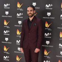 Joan Plazaola en la alfombra roja de los Premios Feroz 2017