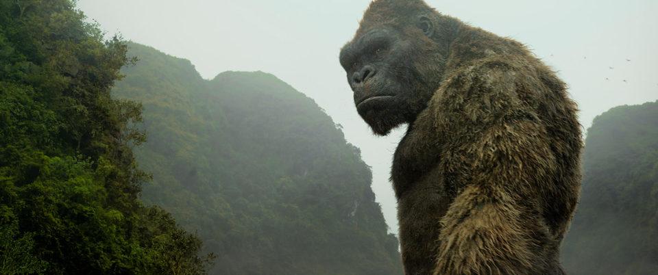 Kong: La Isla Calavera, fotograma 25 de 43