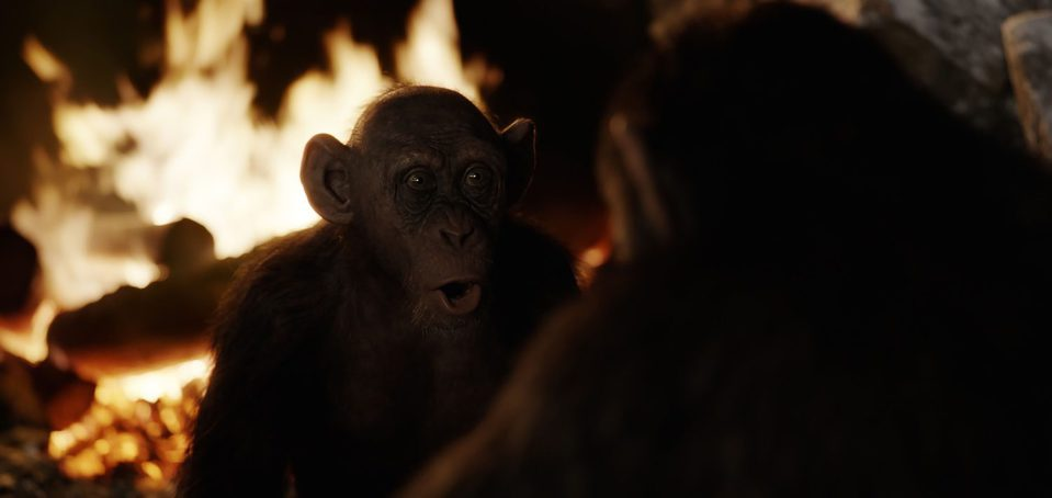 La guerra del planeta de los simios, fotograma 12 de 34