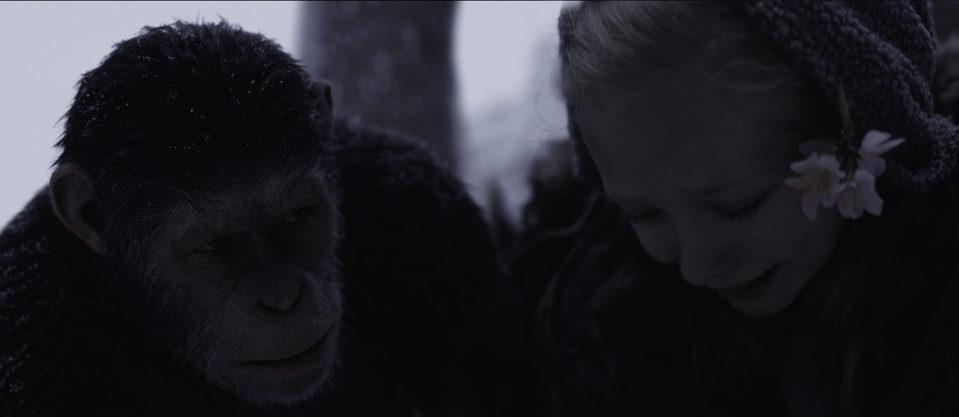 La guerra del planeta de los simios, fotograma 28 de 34