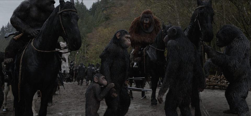 La guerra del planeta de los simios, fotograma 22 de 34