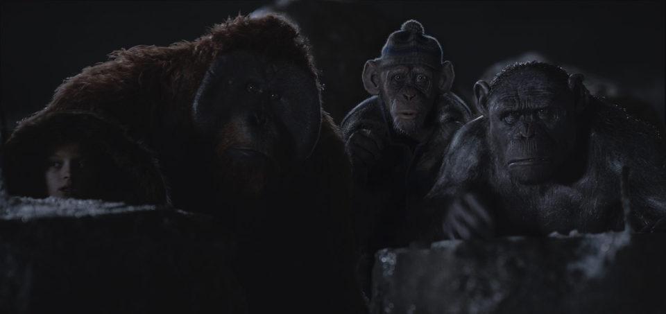La guerra del planeta de los simios, fotograma 21 de 34