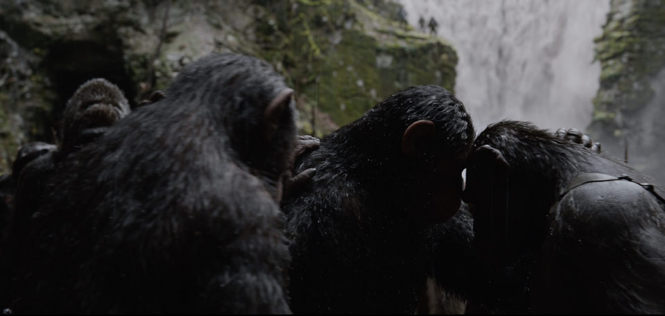 La guerra del planeta de los simios, fotograma 20 de 34