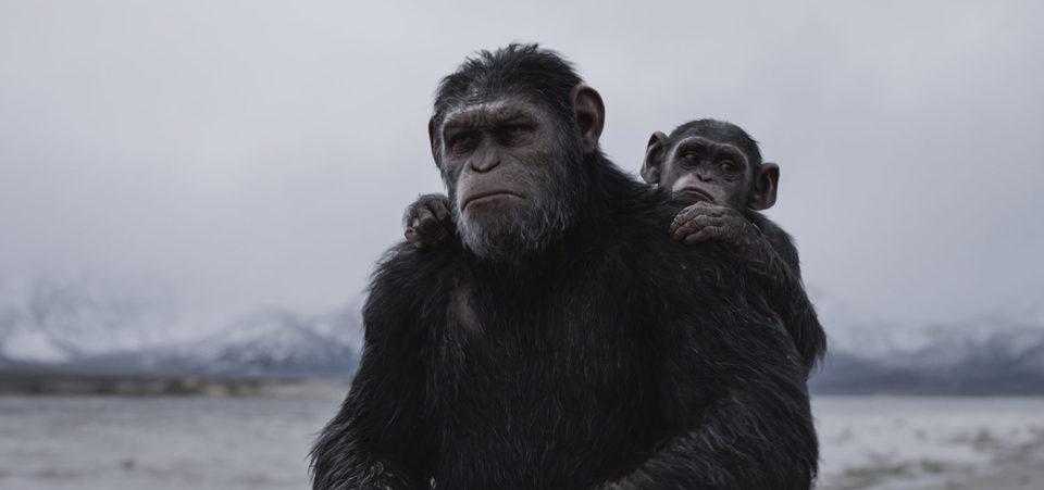 La guerra del planeta de los simios, fotograma 19 de 34
