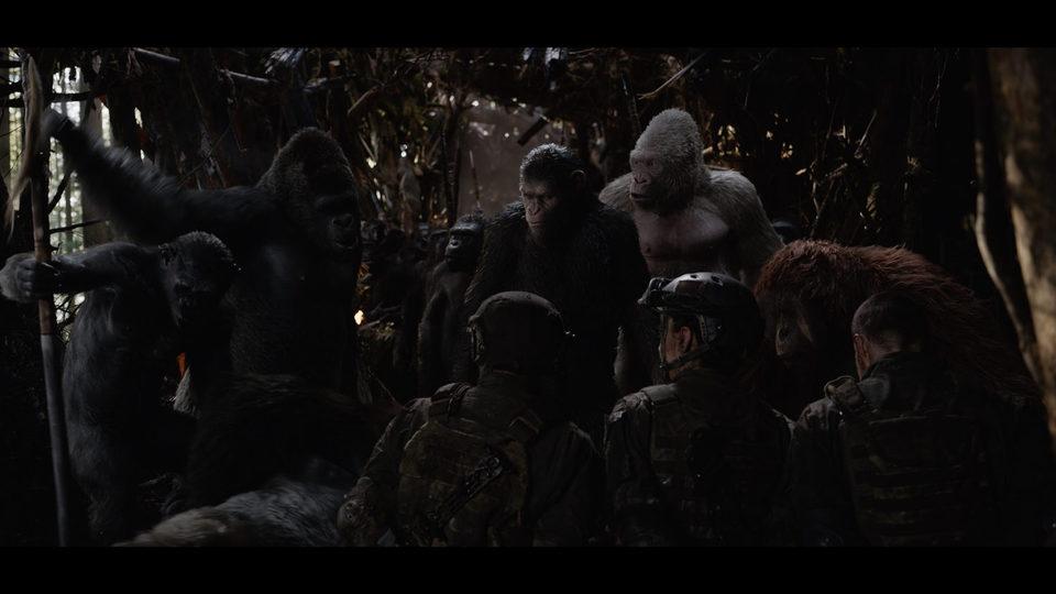 La guerra del planeta de los simios, fotograma 18 de 34