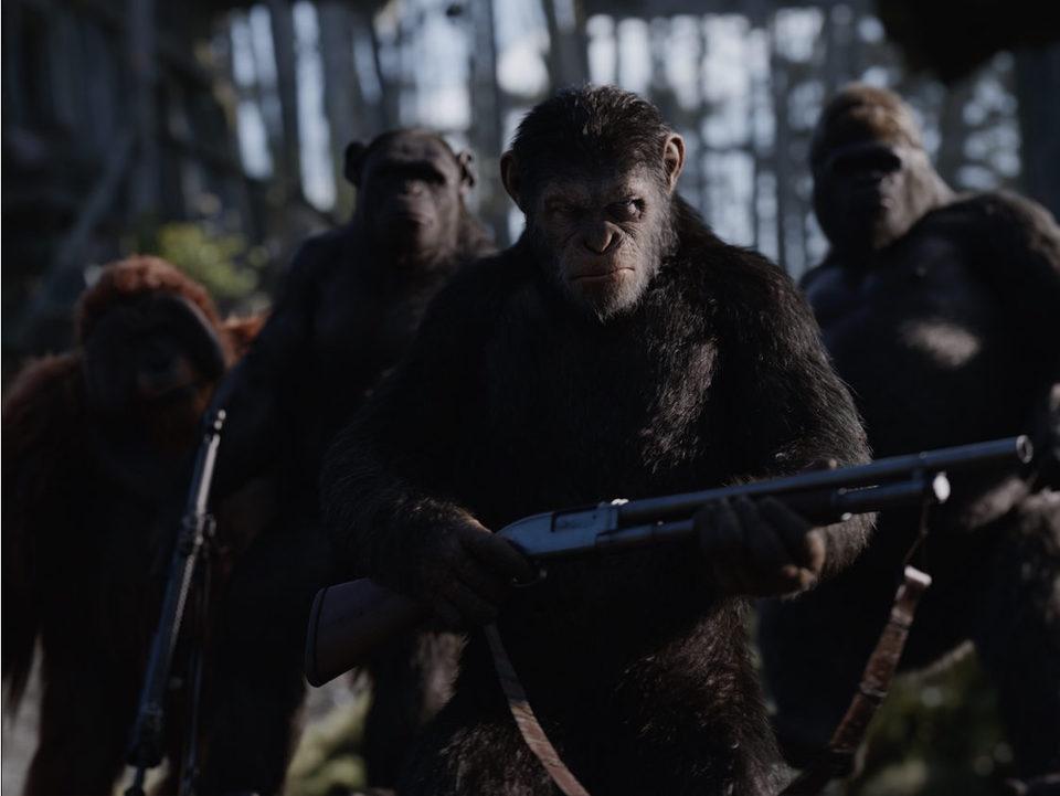 La guerra del planeta de los simios, fotograma 17 de 34