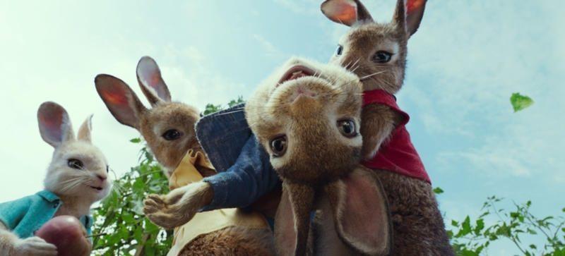 Peter Rabbit, fotograma 1 de 7
