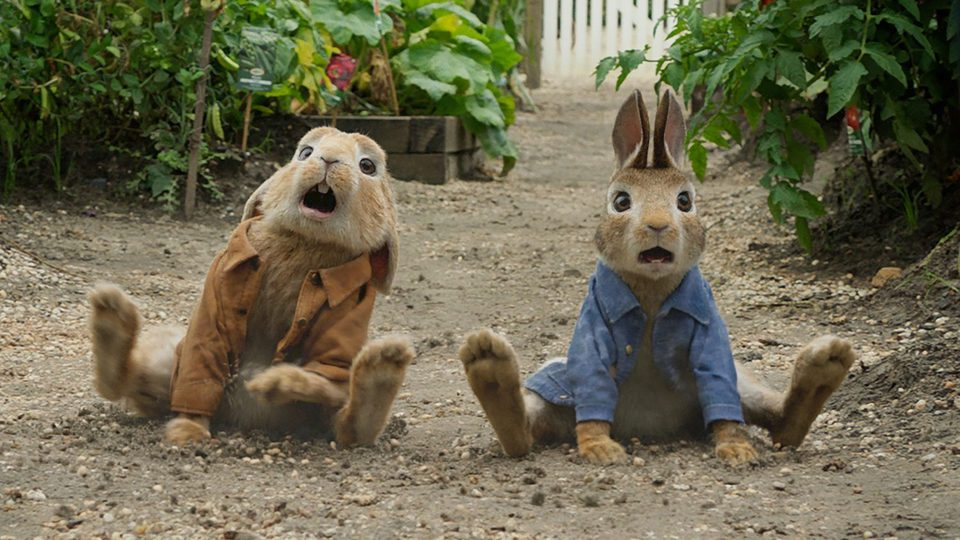 Peter Rabbit, fotograma 5 de 7