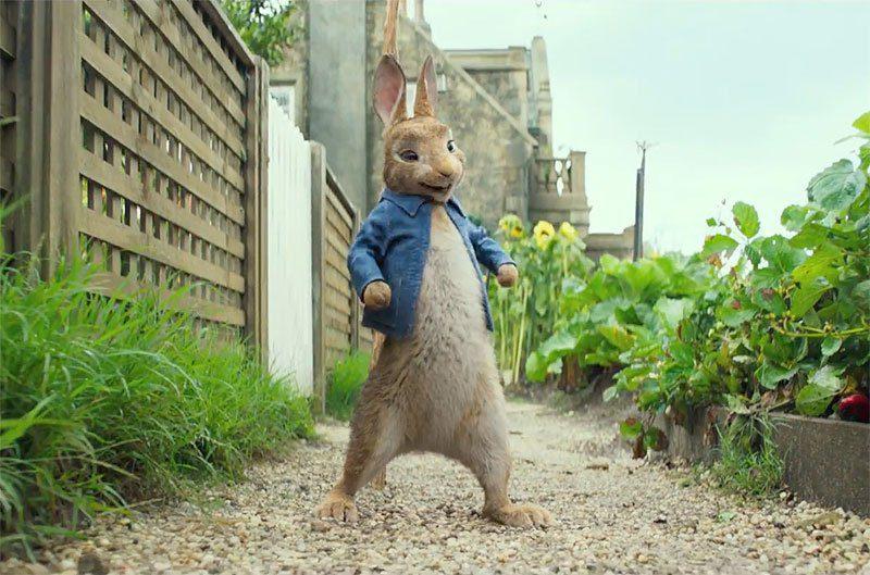 Peter Rabbit, fotograma 4 de 7