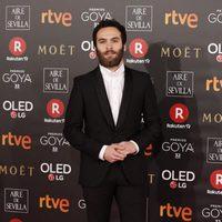 Ricardo Gómez en la alfombra roja de los Premios Goya 2018