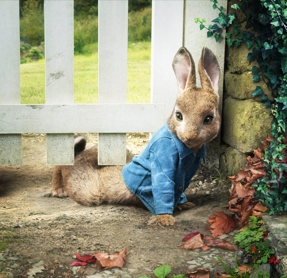 Peter Rabbit, fotograma 7 de 7