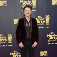 Noah Schnapp en la alfombra roja de los MTV Movie & TV Awards 2018