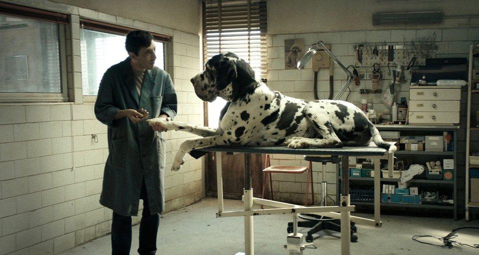 Dogman, fotograma 4 de 8