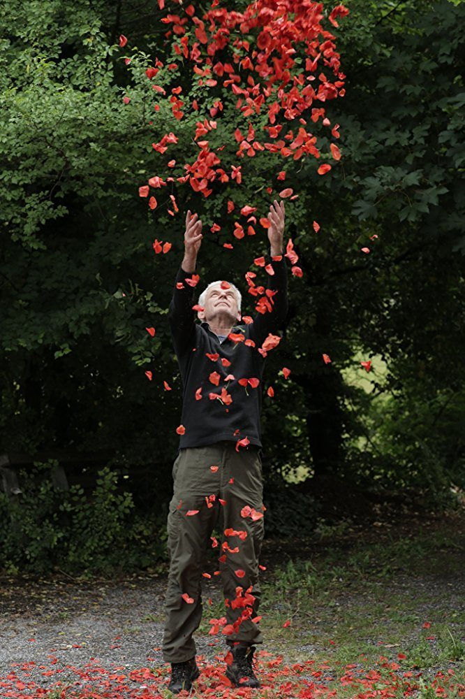 Leaning Into the Wind: Andy Goldsworthy, fotograma 3 de 8