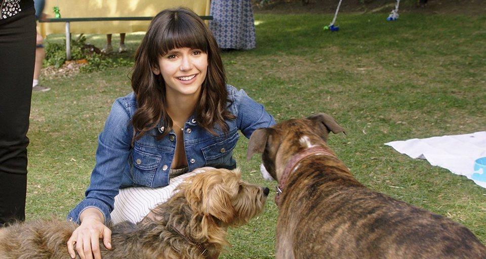 I Love Dogs, fotograma 5 de 14