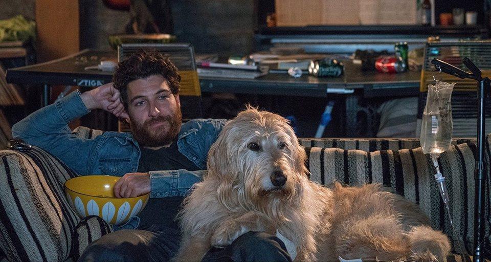 I Love Dogs, fotograma 4 de 14