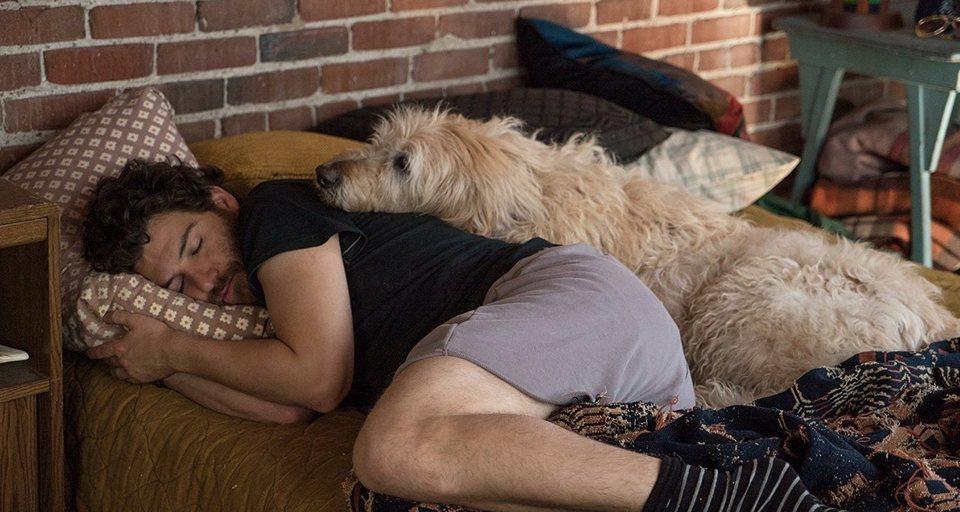 I Love Dogs, fotograma 1 de 14