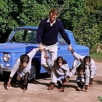 La invasión de los monos
