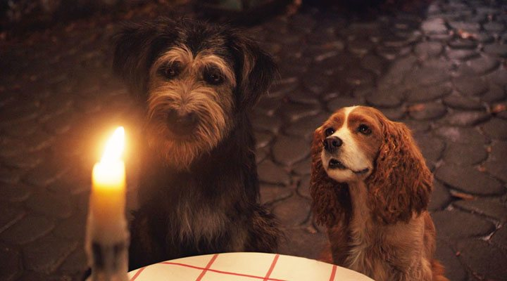 The 'Bella Notte' in the 'Lady and the Tramp' is beautifully shot
