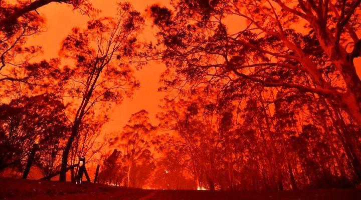 A shocking image of the bushfire crisis in Australia