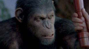 El guionista de 'Contagio' escribirá la secuela de 'El origen del planeta de los simios'