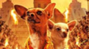 Primer cartel de 'Beberly Hills Chihuahua'