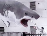 El fenómeno 'Sharknado' se emitirá en 200 cines de Estados Unidos