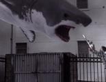 'Sharknado': No ser buen cine pero tampoco intentarlo