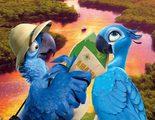 Primer tráiler y pósters en español de 'Rio 2', con Blu y Perla en el Amazonas